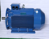 80mm-355mm Frame High Efficiency Three Phase Induction Motor with Ce Approval