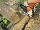 52cc Popular Competition Chainsaw for Sale Machines Chain 5210