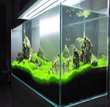 OEM 10mm Ultra Clear Glass Aquarium with Sump Bootom Filtration