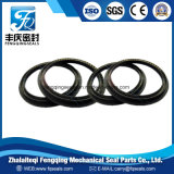 PTFE Steel Spring Energized Seals for Hydraulic Cylinder