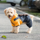 New Puppy Autumn Winter Thick Pet Products Dog Clothes Apparel