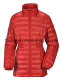 Women's Winter Padded Outerwear Down Jacket