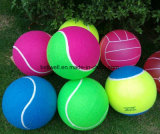 Sport Practice Exercise Tennis Ball
