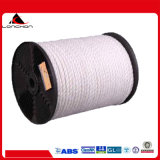 72mm 12strands Polyester Rope for Port Terminals Mooring Rope/Ships Rope/Ocean Rope/Winch Rope