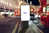 Dedi 55 Inch Freestanding Outdoor Advertising Equipment LCD Display with IP 67
