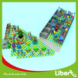 Professional Manufacturer of Children Soft Play Structure, Jungle Gym Special Needs Indoor Playground Equipment Price