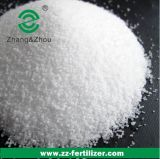 Caustic Soda in Pearl Supplier Price