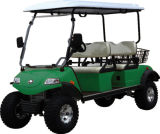 Electric Lifted Cart/Buggy, Utility Vehicle with Basket (DEL2042D, 4-Seater)