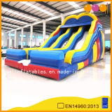 Giant Inflatable Water Slide for Children (AQ09119)