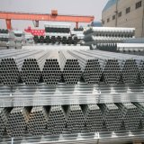 Q195 1.5 Inch Fencing Galvanized Steel Pipe Wholesale / Seamless Hot Rolled Galvanized Pipe