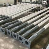 Top Quality Galvanized Aluminum Steel LED Street Light/Lighting Pole