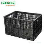 Folding Stackable Fruit Vegetable Transport Tote Moving Storage Plastic Crate