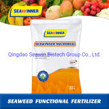 Biological Fertilizer, Bacilli Fertilizer, Seaweed Extract Microbial, Bacillus Subtilis