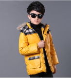 Boy′s Fashionable Winter Down Jacket with Fake Fur