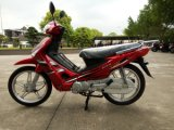 110cc Lucki Cub Motorcycle