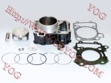 Wholesale Price Motorcycle Accessories Spare Parts Cylinder Kit for Bajaj Pulsar 200ns
