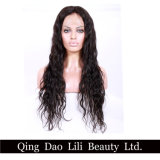 Fast Shipment Wet and Wavy Virgin Brazilian Human Hair Full Lace Wig