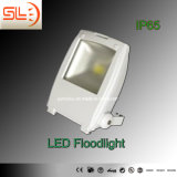 Outdoor High Power 50W LED Floodlights