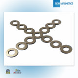 Small Ring with Ts16949 Neodymium Permanent Magnet