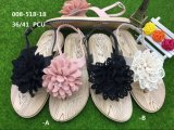 Fashion and New Style PVC Blowing Women Slipper