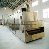Dw Continuous Belt Dryer for Vegetables and Fruits