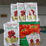Best Selling Sachet Packaging Tomato Paste