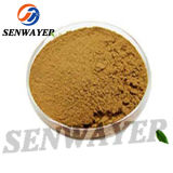 Factory Supply High Quality Cocoa Extract Powder CAS. 84649-99-0 99% Purity