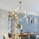 Indoor Home Decoration LED Modern Ceiling Chandelier Pendant Lamp (WH-AP-46)