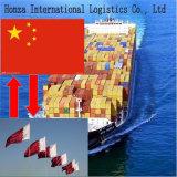 Sea Freight From Shenzhen/Qingdao/Shanghai to Doha of Qatar