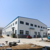 Prefabricated Steel Structure Workshop Shed with Rolling Door