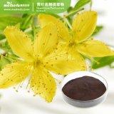 Factory Wholesale Best Price Natural Hypericum Perforatum Extract