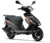 Hot Sell Cheaper Good Design 125cc Scooter