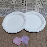 Biodegradable Bagasse Dinnerware Wedding Party Disposable Charger Plate