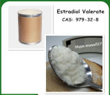 99% Purity Estradiol Valerate Powder 979-32-8 for Female Health
