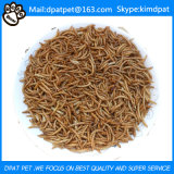 Competitive Price Yellow Bulk Dried Mealworms for Fish Food
