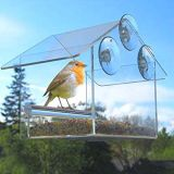 Window Mount Clear Acrylic Bird Feeder with Suction Cups