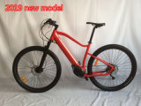 2019 New Model 29inch Mountain Electric Bicycle