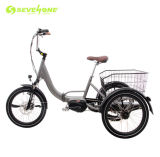Aluminum Frame Suspension Electric Tricycle with Center Motor