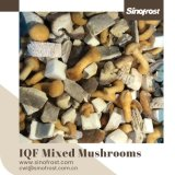 IQF Mixed Mushrooms,Frozen Mixed Mushrooms,IQF Mushrooms Blend,Wild Mushrooms Blend, Pleurotus,Nameko,Shiitake,Boletus Edulis,IQF Mushroom,Frozen Mushrooms