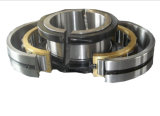 Wholesale Split Spherical Roller Bearing and Split Trust Roller Bearing