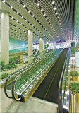 Factory Recommended Safe Low Noise Airport Moving Walkway with CE