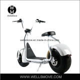 1000W Citycoco/Seev/Wolf/Scrooser Fat Tire Electric Scooter/Harley Electric Motorcycle