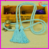 Colorful Long Tassel for DIY, Garments and Hometextil