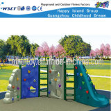 Direct Hold Assembling Climbing Playground Equipment (HF-19306)