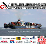 Logistics Service From China to Nepal