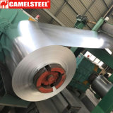 Building Materials Galvanized Sheet Metal Coil for Houses
