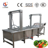 Vegetable Washing Cleaning Machine with Low Price