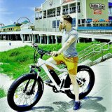 2019 Green Travel Electric Bicycle Electric Bike