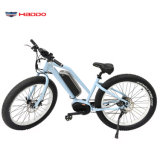 Fashion 2020 Hot Sale Cheap Fat Tire Electric Bicycle