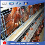 Chicken Cage System Used in Nigeria